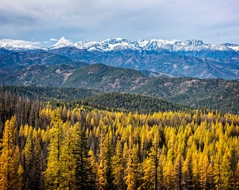 Fall Eastern Washington High Plateau Landscape Image, Fall color Landscape, Fall Mountain Snow, Golden Larch Trees,