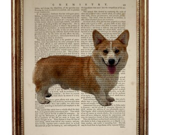 Pembroke Corgi Gifts Pembroke Welsh Corgi Dog Welsh Corgi Dog Breed Poster Dictionary Dog Breed Wall Decor illustration
