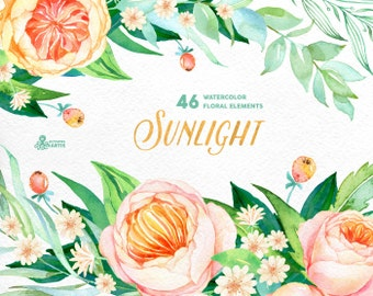 Sunlight: 46 Watercolor Elements, popies, roses, floral wedding invitation, greeting card, diy clip art, flowers, sun, quote clipart, berry
