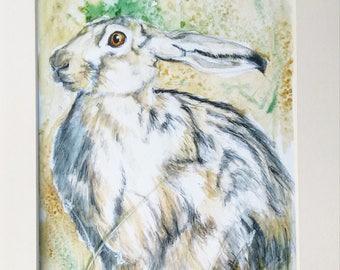 Hare print brown hare art watercolour painting giclee print wildlife art