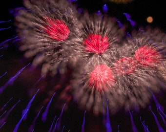 Fireworks Downloadable Print