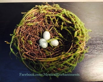 "Mossy Spring Birds nest with bird eggs- 5"""