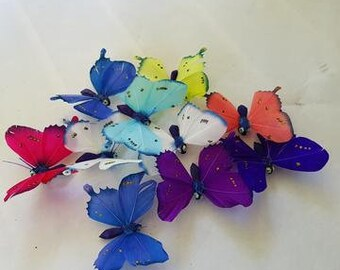 Butterfly and Dragonfly magnets