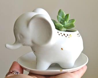 Porcelain elephant succulent planter with 22k gold accent