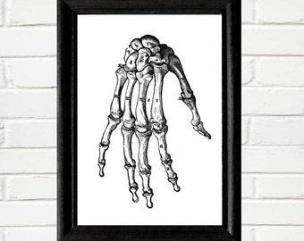 Skeleton HAND human bones anatomy osteology anatomical art print instant printable digital download jpeg DIY vintage antique illustration