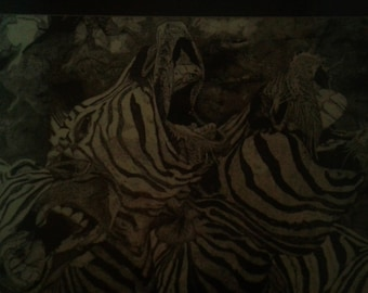laughing zebras