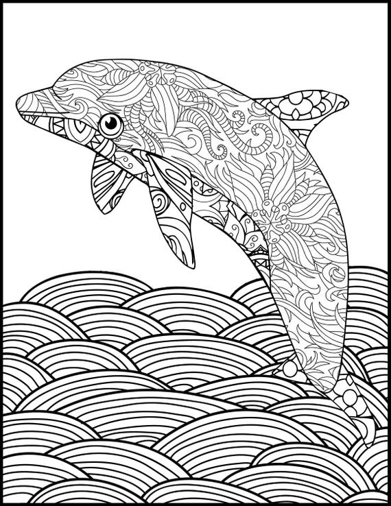Detailed Dolphin Coloring Pages