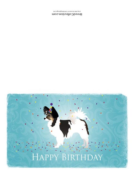 anniversaire chien papillon