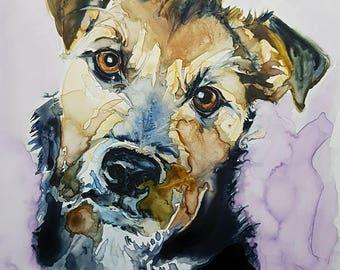 Dog Portraits, Pet Portraits, Terriers, Terrier Art, Dogs
