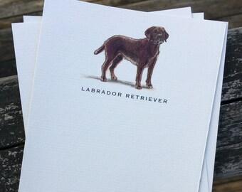 Chocolate Labrador Retriever Dog Note Card Set