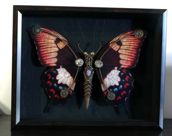Steampunk butterfly sculpture with red , light orange, blue and black wings - Limited series
