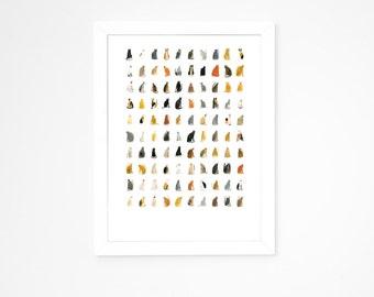 Faye Moorhouse Giclee Print || 100 CURIOUS CATS