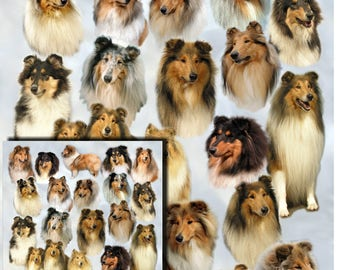 Rough Collie Dog Gift Wrapping Paper with matching Gift Card.