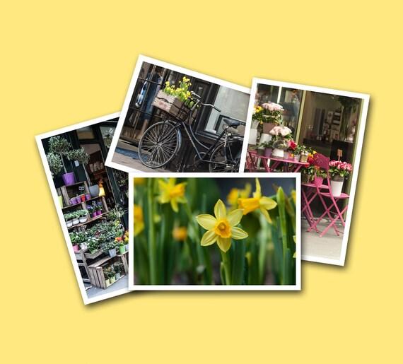 Postcard set, 4 Art Prints, Paris Photography, Flower Decor, Spring Postcards, Fine Art Photography, Spring Wall Art, Yellow Green Pink