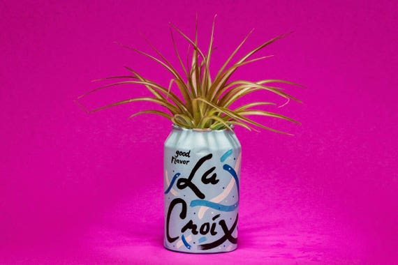 PURE LA CROIX planter