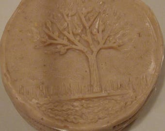 Honey Orange Soap; Handmade Soap Bar; Free Shipping (Domestic Only); Goats Milk Soap; Coconut Milk Soap