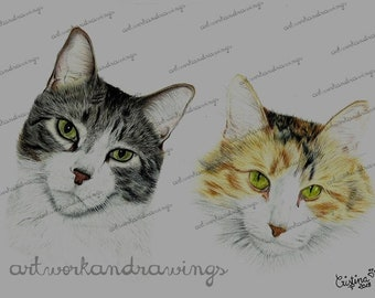 Personalized portraits of two animals in color, custom Pet portrait, color drawings, color portraits, colored drawing
