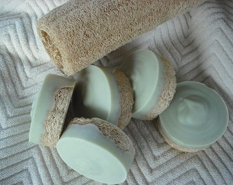 Peppermint / Tea Tree Loofah Foot Soap / Scrub Soap / Cold Process Soap / Goats Milk Soap / Includes Cotton foot stamped drawstring bag
