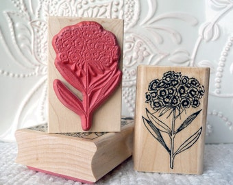 Sweet William flower rubber stamp from oldislandstamps