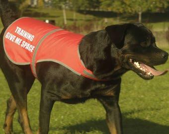 Training Give Me Space Printed High Vis Hi Viz Dog Pet Roadside Safety Vest Reflective Coat Tumblr Pintrest Trends