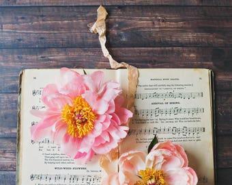 Peonies & Songbook