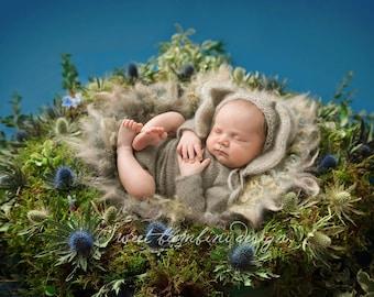 Organic Newborn Digital Background for boys - Natural Nest