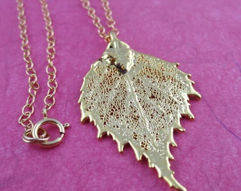 Real leaf necklace - Birch leaf in gold fhz5J