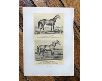 c. 1952 - HORSE PRINT -  original vintage lithograph - Currier & Ives print - hunting - race horse - horse racing - Derby