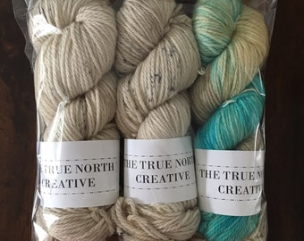 Misfit Grab Bag 4 - WORSTED - 3 skeins - Worsted Weight - Hand Dyed Yarn