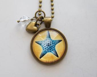 Starfish Necklace - Sea Creature Pendant - Ocean Pentant - Nature Lover - Gift for Science Teacher - Marine Biology - Marine Invertebrate
