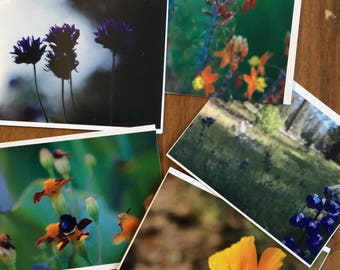 Photo Cards - Flowers