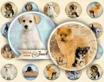 Dogs - circles image - digital collage sheet - 1 x 1 inch - Printable Download