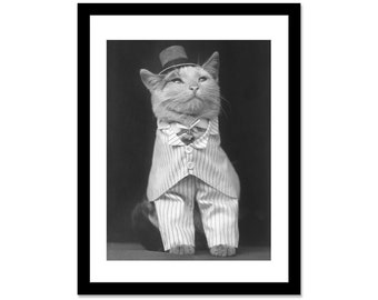 Black and white photo of a cat posing in a Tux in 1914