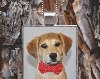 Custom Photo Pet Pendant Necklace