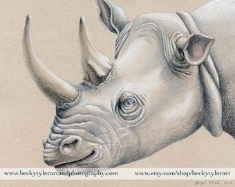 Rhinoceros Portrait Original Drawing 11x14