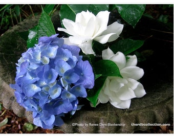 Hydrangea and Gardenias Photograph