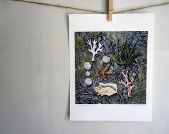 Beachcomber, beach decor, natural history, Archival Reproduction Print 8.5 x 11, beach ocean