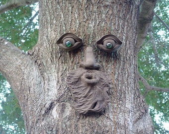 Whistlin' Pete Tree Face