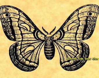 Cecropia Moth Rubber Stamp