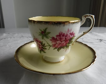 PARAGON CUP and SAUCER white and yellow with pink flowers