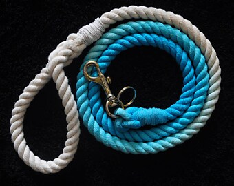 Cute Ombre Dog (Dip Dyed) Lead / Leash - Blue