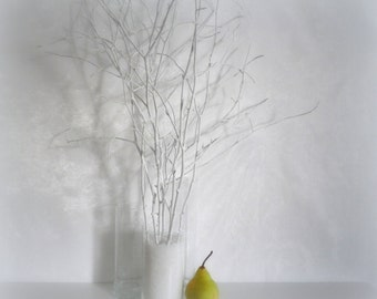 White tree branches, scandinavian home decor, woodland decor, painted branches, wedding centerpiece,  natural decorative twigs, vase filler