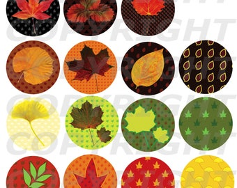 Challenge October 2016 60 digital IMAGES for cabochon autumn leaves fall red Orange yellow green khaki