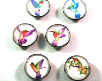Hummingbird Magnets, Kitchen Magnets, Refrigerator Magnets, Bird Magnets, Hummingbird Magnet, Magnets with Birds, Fridge Magnets