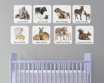 Mamas and Babies Wall Decals! In Stock!