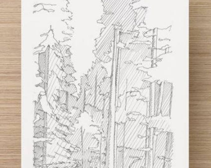 Ink Sketch of Redwood Trees in Northern California - Avenue of the Giants, Drawing, Pen and Ink, National Park, Landscape, 5x7, 8x10, Print