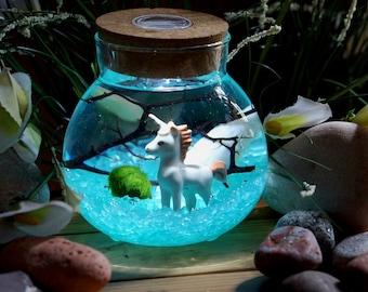 Miniature Marimo Moss Ball Orb Terrariums Aquarium Unicorn