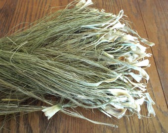 Yucca Fiber Natural Baskets Crafts Coiling Cordage Basketry Organic Hand Processed Native American Plant Material Coiled Basket Accent