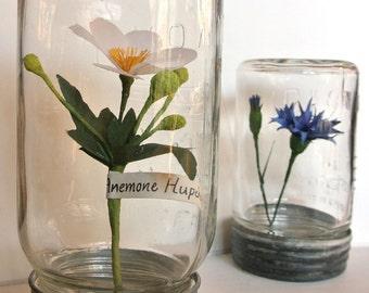 Anemone paper flower sculpture in antique jar handmade botanical specimen