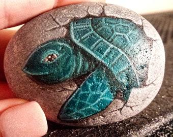 Lagerhead sea turtle hatchling